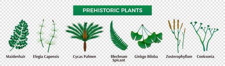 Prehistoric plants horizontal set with isolated images of herbs with editable text captions on transparent background vector illustration