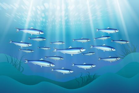 Fish colony schooling close to ocean bottom realistic underwater image with sun rays penetrating water vector illustration  Ilustração