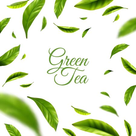 Green tea background with frame of scattered green leaves around text abstract vector illustration Vector Illustratie