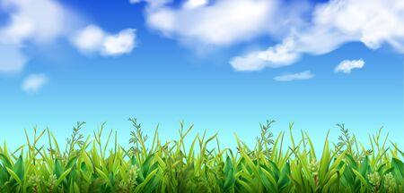 Grünes Gras und blauer Himmel mit realistischer Vektorillustration des Wolkenhintergrundes Vektorgrafik