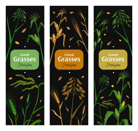 Cereal grasses vertical posters set with green and yellow images of eared plants on black background isolated vector illustration