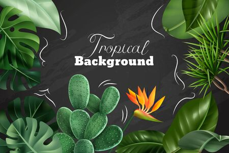 Colored tropical background with realistic images of  houseplants flowers and leaves on chalkboard vector illustration