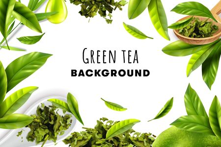 Green tea white background with herbal frame of fresh leaves and piles of dry tea realistic vector illustration