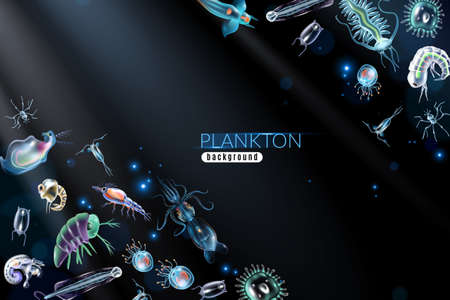 Plankton abstract background with marine different small organism both phytoplankton and zooplankton cartoon vector illustration