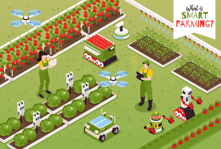 Isometric smart farm composition with outdoor scenery and flying drones with gardening robots and human characters vector illustration