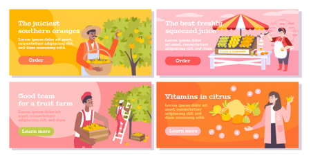 Citrus flat banners set with people collecting oranges on southern  farm sellers and buyers of fruits and juice vector illustration