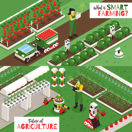 Set of two isometric smart farm horizontal banners with outdoor views of plantations with farming robots vector illustration