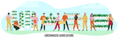 Agriculture composition with people cultivating greenhouse plants flat vector illustration