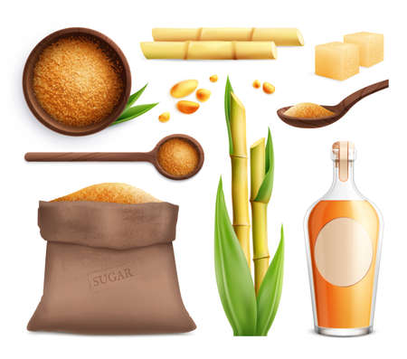 Cane sugar realistic icon set with different products made from sugar cane vector illustration