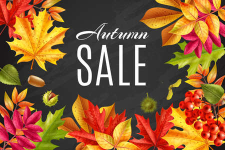 Realistic fall sale chalkboard frame background with space for editable text surrounded by faded leaves foliage vector illustration Illusztráció
