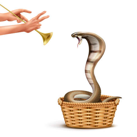 Cobra and snake charmer realistic composition with isolated images of human hands playing pipe and snake vector illustration