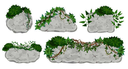 Tropical lianas stone boards set with isolated images of signboards made of rocks with vine leaves vector illustration
