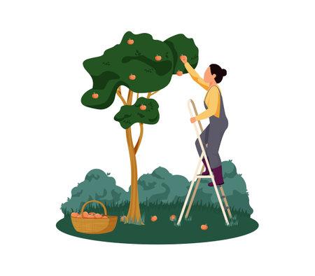 Flat Organic Farm Illustration Ilustração