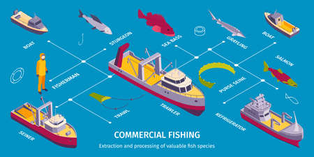 Commercial Fishing Boats Infographics