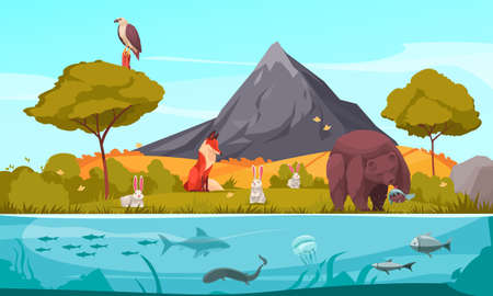 Biological Hierarchy Cartoon Background