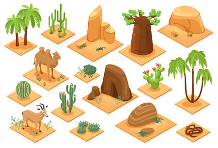 Desert Elements Isometric Set