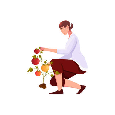 Woman Gathering Fruits Composition