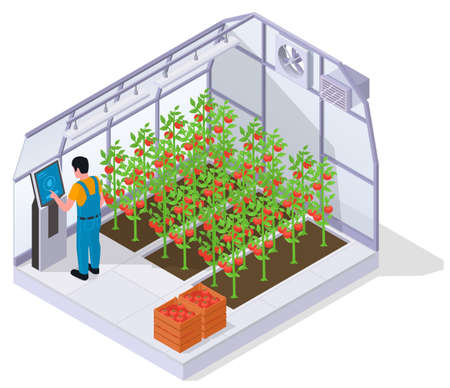 Modern Greenhouse Isometric Concept Иллюстрация