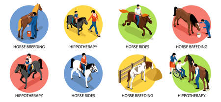 Hippotherapy Compositions Set