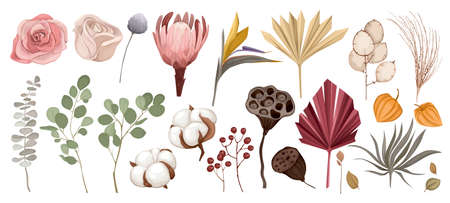 Dried Flowers Icon Set