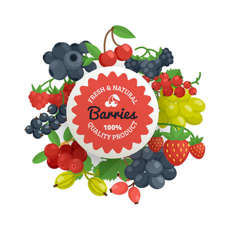 Fresh natural and quality tagline on the garden berries in bunches with leaves flat color emblem vector illustration Ilustração
