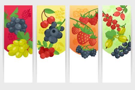 Berries with nature and fresh tagline color vertical banner set isolated vector illustration