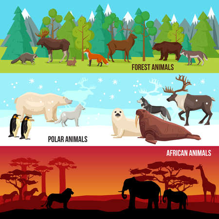 Flat horizontal banners set with forest polar and african animals on nature backgrounds isolated vector illustration