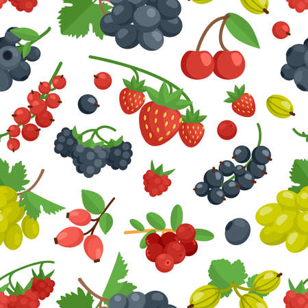 Berries cherry grape currant rosehip and other color seamless ornament vector illustration