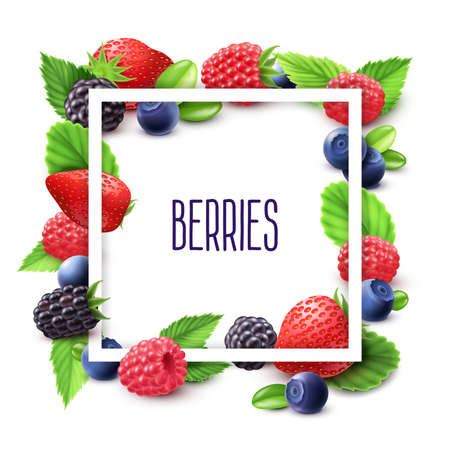 Berries and frame realistic set with blueberry strawberry and blackberry vector illustration Ilustração