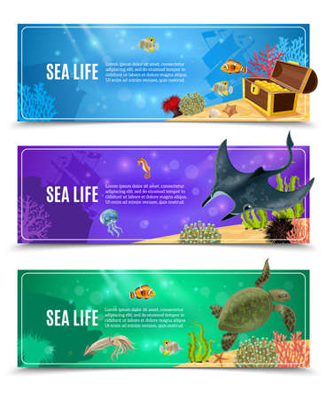 Variants of underwater sea life and seabed decorative banner set vector illustration