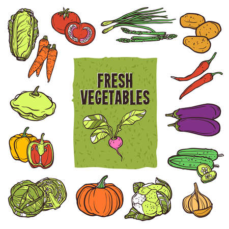 Vegetable sketch icons set with cauliflower asparagus cabbage and garlic isolated vector illustration Illusztráció