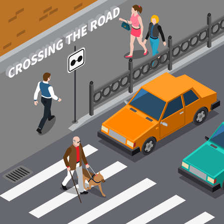 Blind person with cane and seeing eye dog on crosswalk cars waiting on road isometric vector illustration Vetores