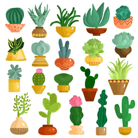 Cacti and succulents in pots flat icons collection with aloe agave kalanchoe opuntia euphorbia isolated vector illustration