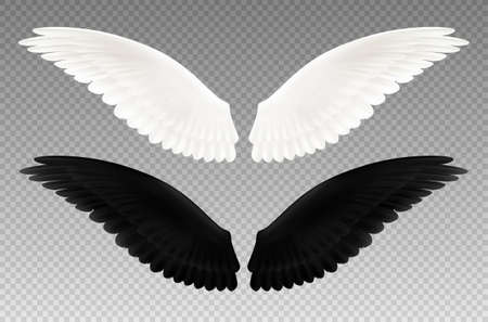 Set of realistic black and white pair of wings on transparent background as symbol of good and evil isolated vector illustration