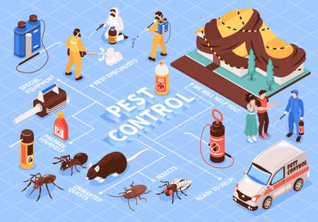 Pest control home office disinfection service isomeric flowchart with professional team equipment car insect rats vector illustration