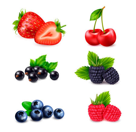 Berry fruit realistic set with isolated colourful images of berries sorted by different species with shadows vector illustration
