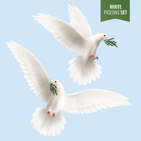White dove set with peace and olive branch symbols realistic isolated vector illustration Vector Illustratie