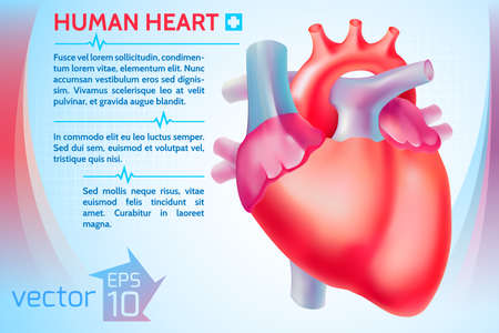 Healthy medicine template with text and colorful human heart on light background vector illustration Vector Illustration