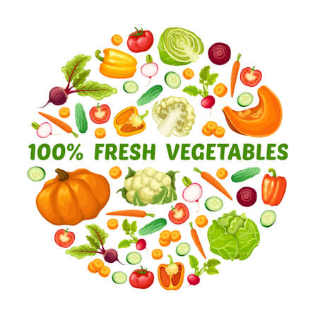 Fresh farm food round concept with different organic vegetables in cartoon style vector illustration