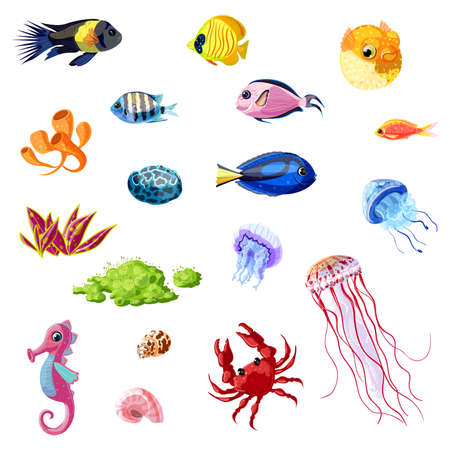 Cartoon colorful sea life set with different fishes seahorse jellyfishes crab shells corals seaweeds plants isolated vector illustration