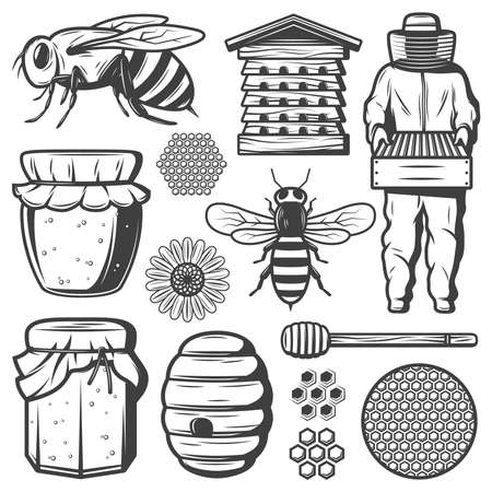 Vintage honey elements collection with bee beehive dipper stick flower honeycombs beekeeper pot jar isolated vector illustration