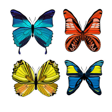 Colorful graphic insects set with different kinds of butterflies on white