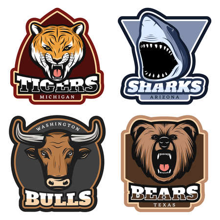 Colorful wild animals labels set with tiger shark bull and bear heads in vintage style isolated vector illustration