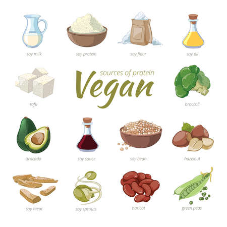 Vegan sources of protein. Plant based protein icons in cartoon style. Peas and haricot, hazelnut and avocado, broccoli and soy, vector illustration