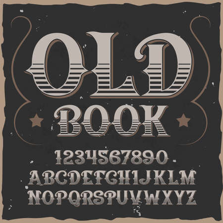 old Book alphabet with square frame and vintage typeface with lines digits and letters vector