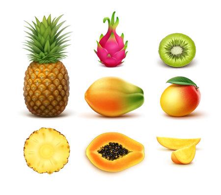 Vector set of whole and half cut tropical fruits pineapple, kiwi, mango, papaya, dragonfruit isolated on white background Vektorové ilustrace