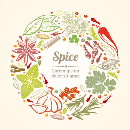 Spices and herbs icons in circle composition. Vector healthy lifestyle concept. Organic spice plant, nature spice, composition spice and herb circle, banner icon herb illustration