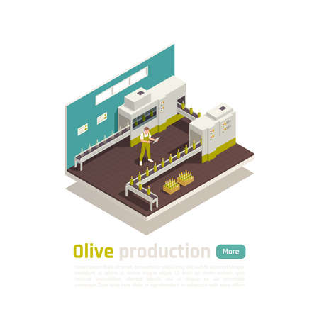 Olive olive production isometric composition with bottling line conveyor operator checking ready for transportation boxes vector illustration