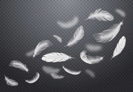 Set of white falling bird feathers on dark transparent background in realistic style vector illustration Vetores
