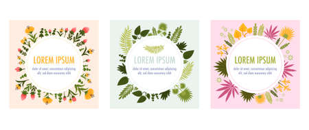 Round frame plants flat icon set with different leaves flowers and colors and space for text in the center of the circle vector illustration